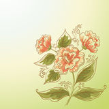 Holiday Background, Flower and Leaves Stock Photo