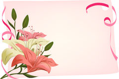 Holiday background with lilies Stock Photography