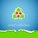 Holiday background with mistletoe Stock Photos