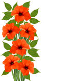 Holiday background with orange beautiful flowers. Vector illustration Royalty Free Stock Photo