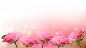 Holiday background with  pink flowers. Stock Photo
