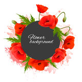 Holiday background with red flowers. Royalty Free Stock Photos
