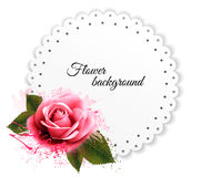 Holiday background with red pink flower and gift card. Stock Photos