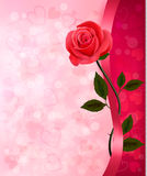 Holiday background with red rose and ribbon. Valen Royalty Free Stock Photos