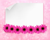 Holiday background with sheet of paper and flowers. Royalty Free Stock Images
