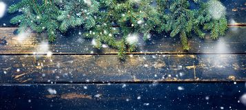 Holiday Banner Green Christmas Natural Fir Spruce royalty free stock image