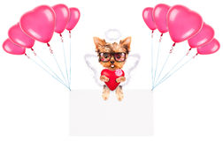 Holiday banners with balloons and dog. Holiday banner with balloons and valentine puppy dog holding red heart Royalty Free Stock Image