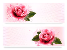 Holiday banners with pink beautiful roses. Vector Stock Photos