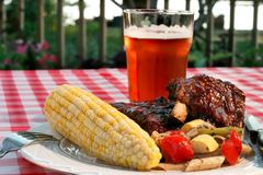 Free Holiday BBQ Royalty Free Stock Photography - 2550487