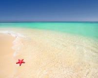 Holiday beach Royalty Free Stock Photos