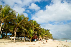 Holiday Beach. Image from Playa El Aqua, Margarita Island, Venezuela. Palm trees on the left and Caribbean sea on the right Royalty Free Stock Photo