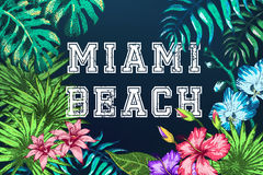 Holiday Beach Resort Stock Photos