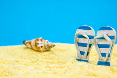 Holiday on the beach Stock Images