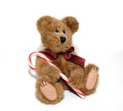 Holiday Bear with Candy Cane Stock Photography