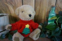 Holiday Bear Stock Image