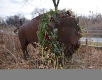 Holiday Bison Royalty Free Stock Photography