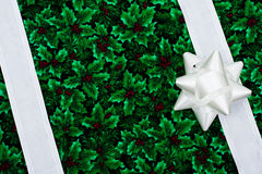 Holiday Border Stock Images