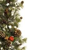 Christmas evergreen border on white Stock Photo