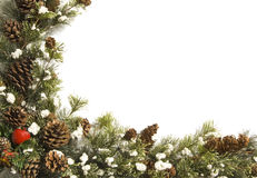 Holiday evergreen border. Border of holiday evergreen branches with pine cones, apple and red gift with white copy space Royalty Free Stock Photography