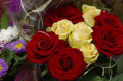 Holiday Bouquet. Festive bouquet of red and yellow roses close-up Stock Image
