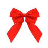 Holiday bow. Isolated Stock Image