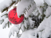 Holiday Bulb. Red Christmas buld hanging on a snow-covered evergreen royalty free stock photos