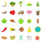 Holiday camp icons set, cartoon style Stock Image
