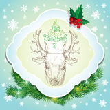 Holiday card with deer sketch and handwritten calligraphic text Stock Photos