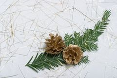 Holiday card with fir branch and golden cones. Small fir branch, golden cones on spangled holiday napkin Stock Image