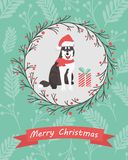 Holiday card with twigs and berries ornament and funny husky Stock Image