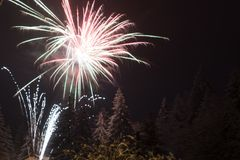 Fireworks on fir trees covered in snow royalty free stock image