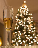 Glass of champagne with Christmas tree Royalty Free Stock Photo