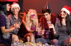 Holiday cheer Stock Image