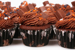 Holiday Chocolate Cupcakes Royalty Free Stock Images