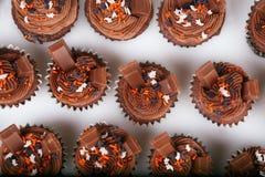Holiday Chocolate Cupcakes Royalty Free Stock Image
