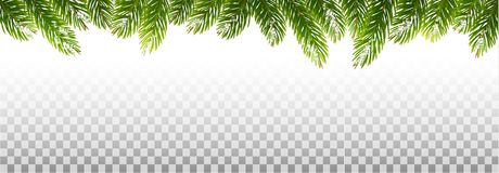 Holiday Christmas Frame With Green Tree Branches vector illustration
