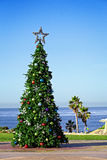 Holiday Christmas Tree California Pacific Coast. Holiday Christmas Tree Decorating California Travel And Vacation Location Solana Beach's Fletchers Cove With Royalty Free Stock Images