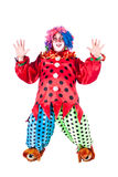 Holiday clown. Man dressed as clown red. White background. Studio photography Stock Photography