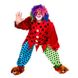 Holiday clown. Man dressed as clown red. White background. Studio photography Stock Photo