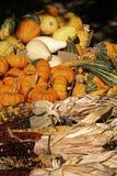 Holiday Corn and Pumpkins Royalty Free Stock Image