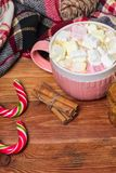 Holiday cup of cocoa with marshmallow or coffee with spice and home cookies. Christmas background Royalty Free Stock Images
