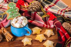 Holiday cup of cocoa with marshmallow or coffee with spice and home cookies. Christmas background Stock Images
