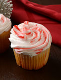 Holiday cupcake Stock Image