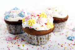 Holiday cupcakes on white background Stock Images