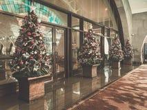 Holiday decorated christmas tree Stock Image