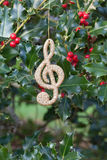 Holiday decoration on holly sprigs Royalty Free Stock Photo