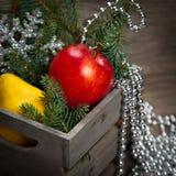 Holiday Decorations Stock Photos