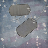 Holiday Dog Tags Stock Photo
