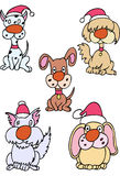 Holiday Dogs. Set of 5 dogs in holiday attire Stock Images