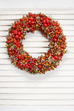 Holiday door wreath with rose hip, hawthorn and rowan berry Royalty Free Stock Images